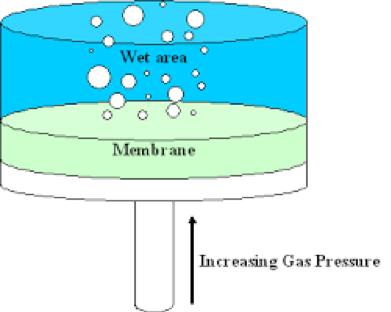 Figure 2 Bubble Point Test Image